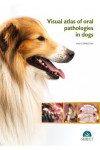 Visual atlas of oral pathologies in dogs | 9788416315772 | Portada